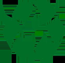 logo tidyman
